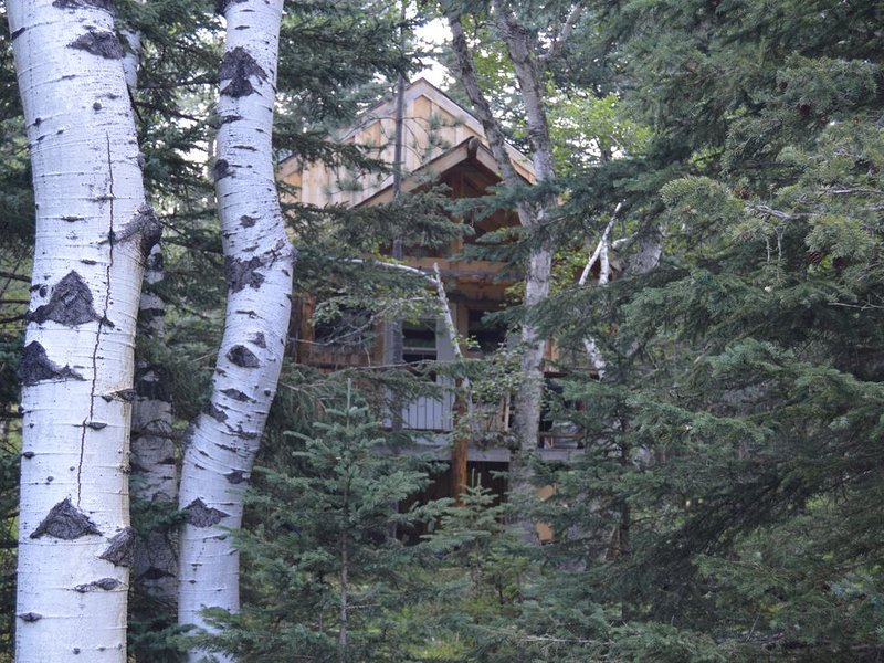 Rustic Cabin in the Black Hills with access to Forest Service trail system., vacation rental in Deadwood