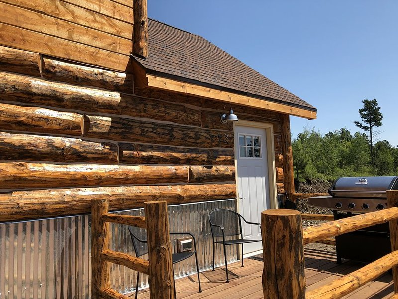Big Mountain Cabins - A Modern Rustic Experience  - New in 2018, Sleeps 2 to 6, holiday rental in Rockerville
