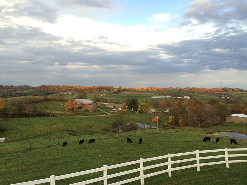 Great for Friends & Families, Breathtaking View, Nature Trails, Farm Animals, holiday rental in Millersburg