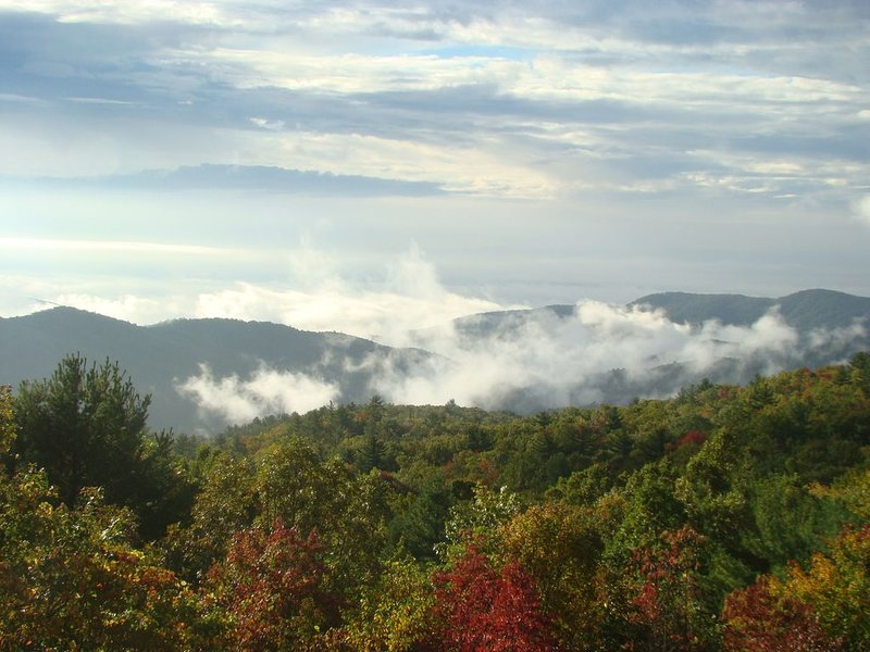 Windsong Cottage-- Enchanting Mountain Hideaway, holiday rental in Linville Falls