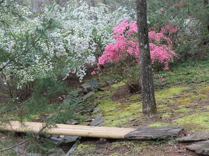 Puente a través del camino del derrame forrado con azaleas