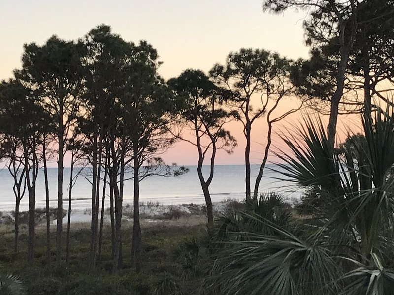 Beautiful couple's retreat -Gorgeous ocean view Free beach bikes and chairs, location de vacances à Daufuskie Island
