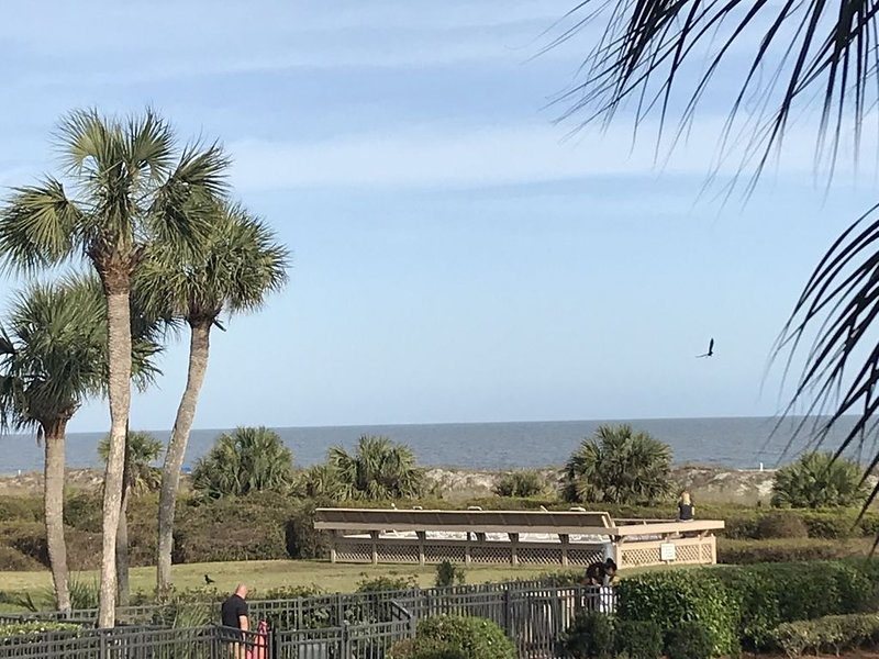 Stunning Oceanview Luxury Remodel, Bikes Included!, location de vacances à Daufuskie Island