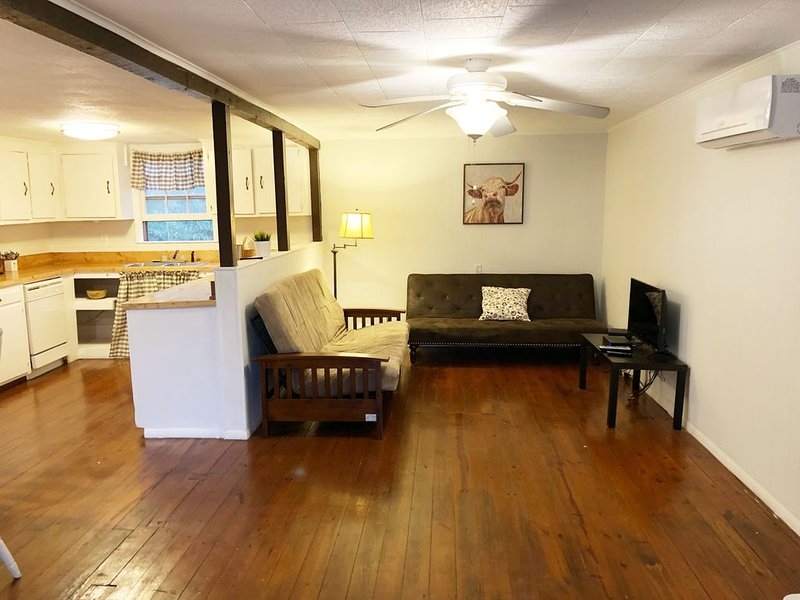Bright and beautiful Cottage near Spartanburg , Tryon Intl Eq Center, Asheville., holiday rental in Roebuck