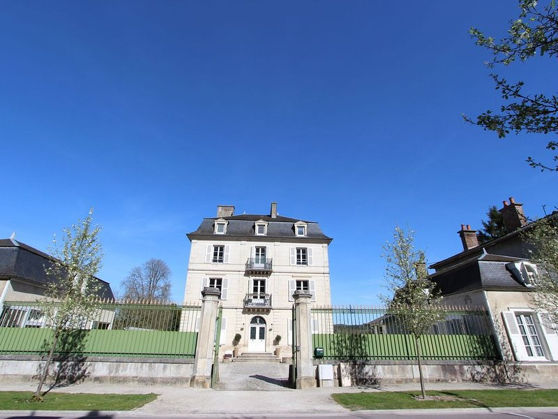 Heritage Castle in Bar-sur-Seine near River, holiday rental in Aube