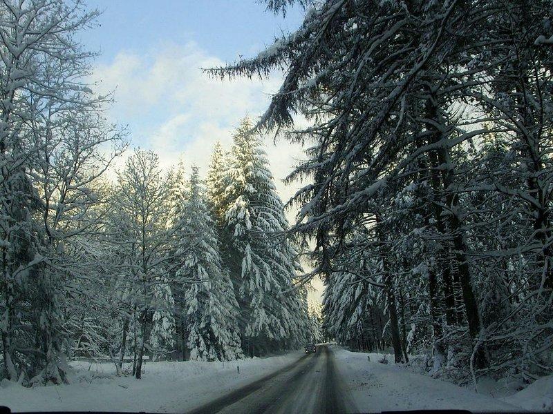 Alrededores [invierno] (1-5 km)