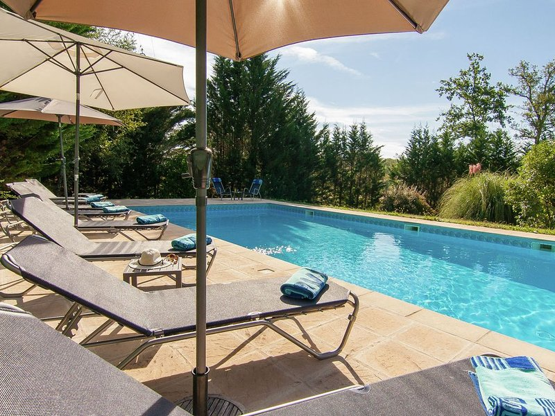 Spacious villa with heated pool, several terraces and a lot of privacy., alquiler vacacional en Loupiac