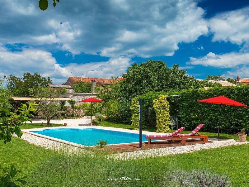 Wonderful villa with private pool near Sv. Lovrec, holiday rental in Mofardini