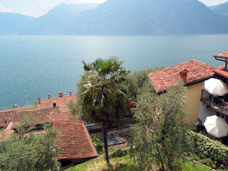 Idyllic Apartment in Vello with Balcony, Garden Furniture, holiday rental in Sale Marasino