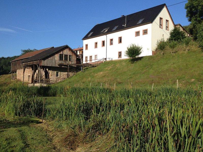 Comfortable Apartment in Meisburg Eifel near Watermill, holiday rental in Malberg