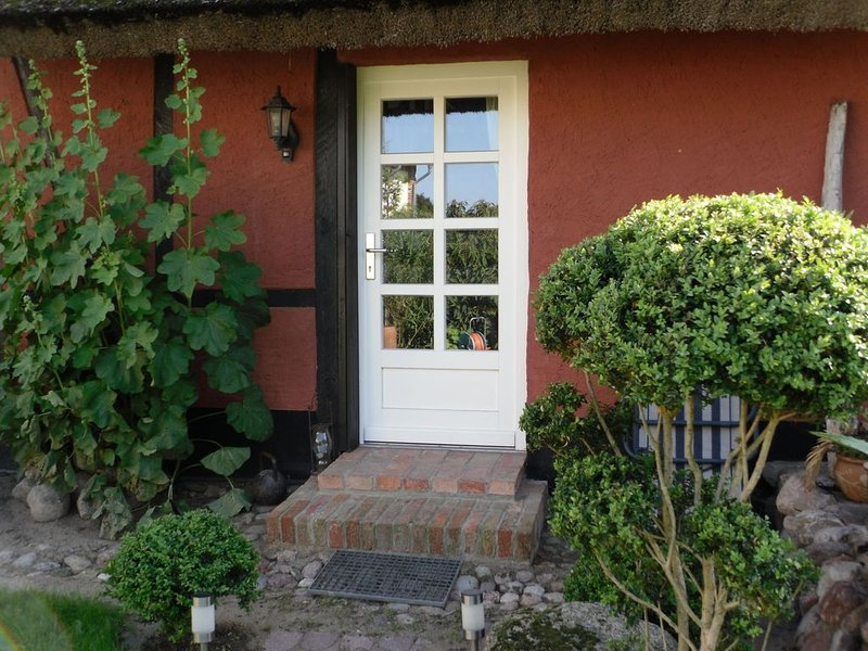 Cozy mansion in artist studio in Steffenshagen with terrace, holiday rental in Steffenshagen