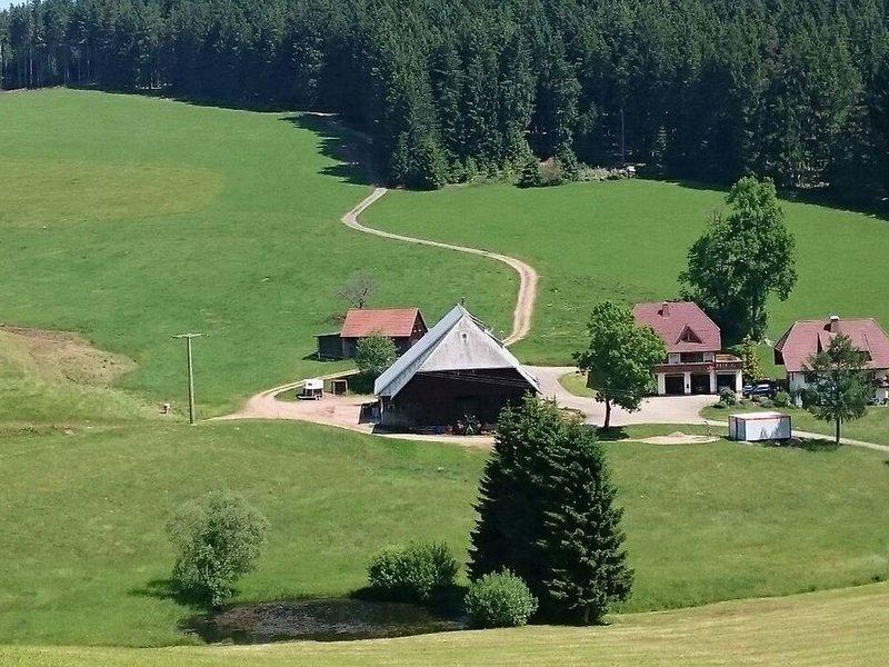 Morgenrot, 60qm, 2 Wohn-/Schlafräume, max. 5 Personen, casa vacanza a Bubenbach