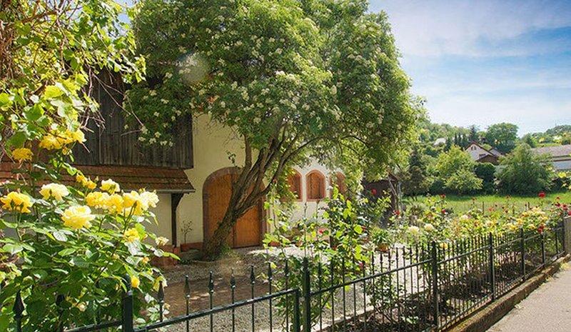 Winzerhaus, 60 qm mit Garten und 1 Schlafzimmer für max. 2 Personen, holiday rental in Vogtsburg im Kaiserstuhl