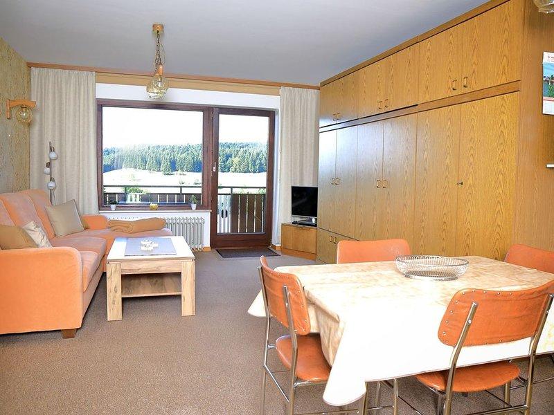 Ferienwohnung Nr. 5, 62 qm mit Balkon und 1 Schlafzimmer für max. 4 Personen, holiday rental in Laufenburg