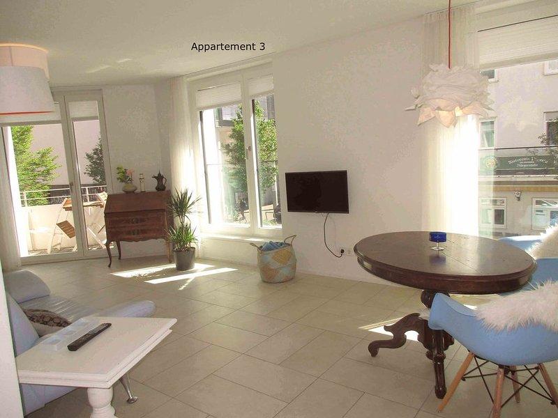 Apartment 3, 42qm, 1 Wohn-/Schlafzimmer, max. 2 Personen, vacation rental in Umkirch