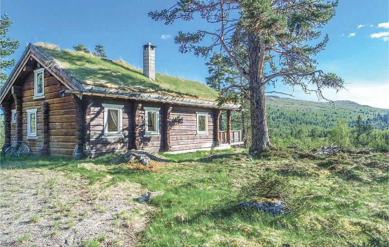 3 Zimmer Unterkunft in Uvdal, vacation rental in Buskerud