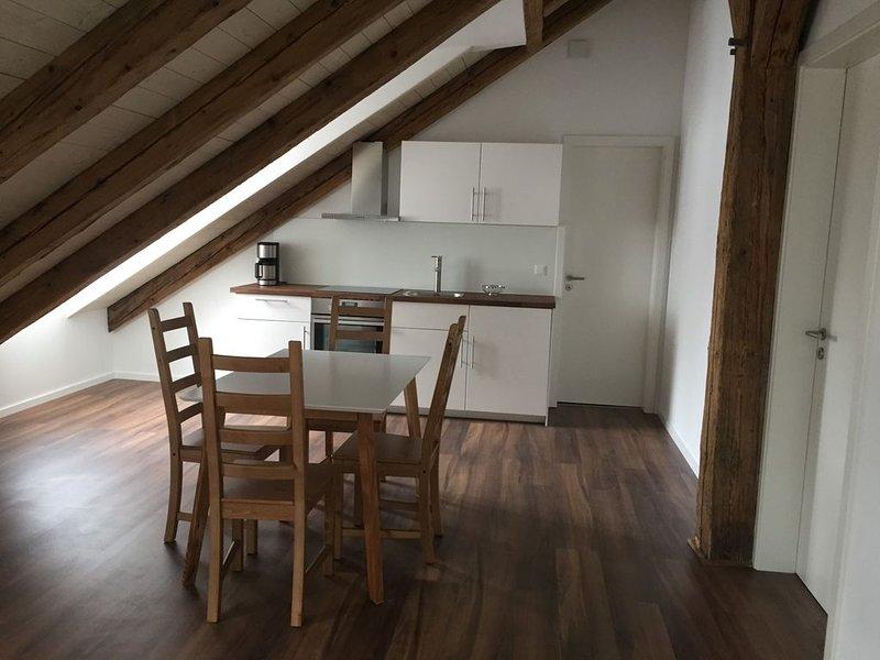 Zwei-Zimmer-Appartement in der westlichen Altstadt Regensburgs, holiday rental in Kelheim