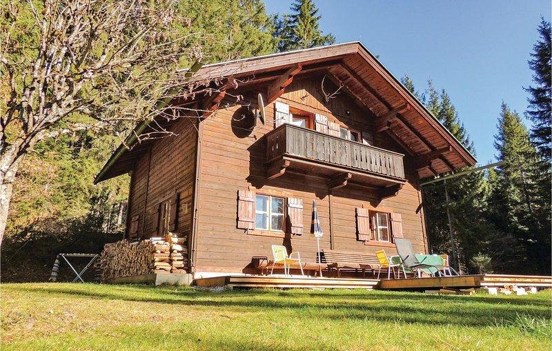 2 Zimmer Unterkunft in Pillberg, holiday rental in Kolsassberg