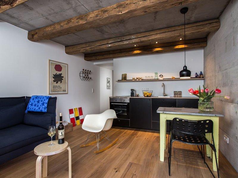 FRIZ 4, Modernes Apartment in historischer Scheune, holiday rental in Umkirch