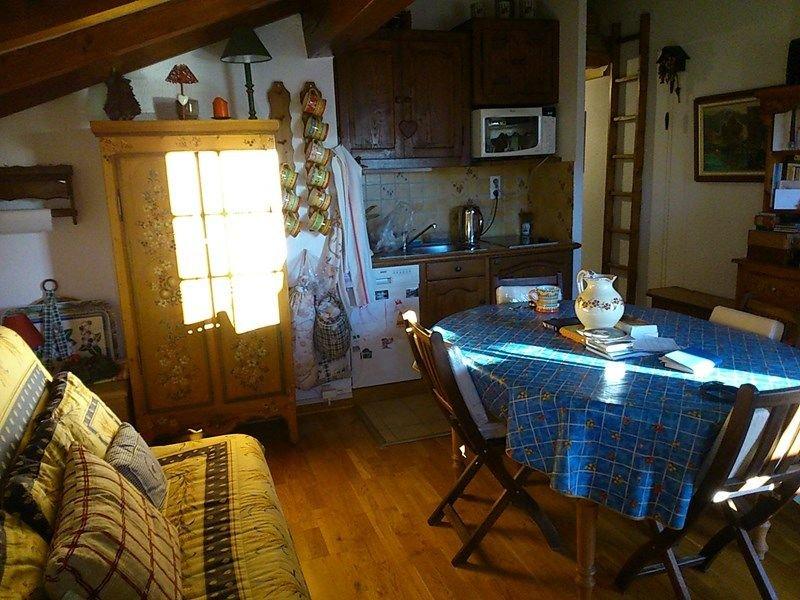 Appartement 4 personnes de 30 m², holiday rental in Crest-Voland