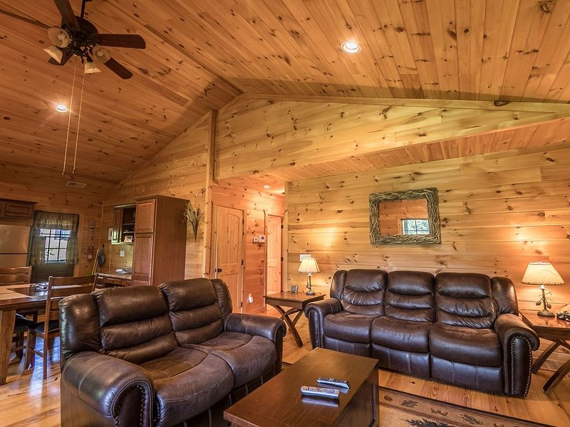 A Happy Roost - Rustic cabin near Boone with hot tub, gas fireplace, vacation rental in Vilas