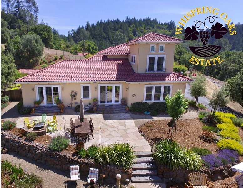 Stunning Mountain Top Estate with View Over Dry Creek Vineyards, vacation rental in Healdsburg