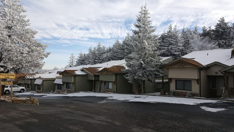 The Bunkhouse - Sleeps 8 for the Price of a 2 Bedroom, holiday rental in Slatyfork