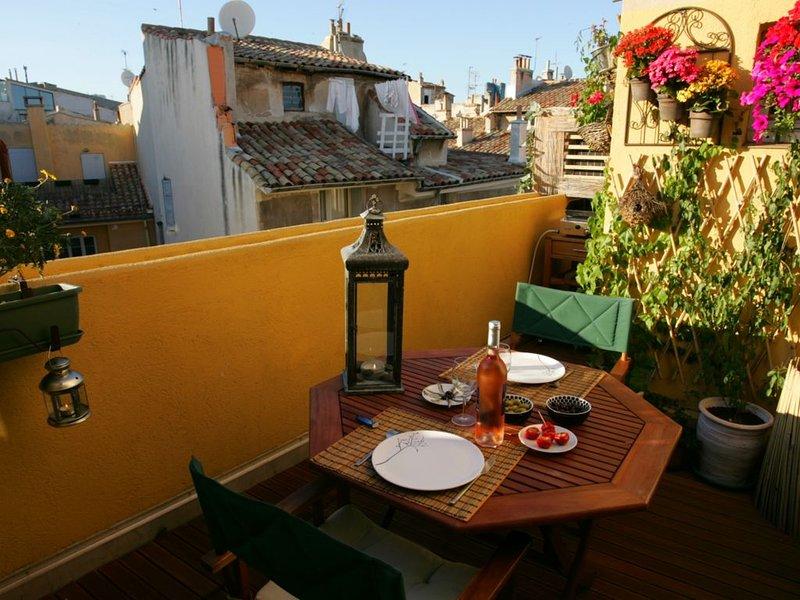 Appartement de charme avec 2 terrasses en plein coeur du centre historique d'Aix, holiday rental in Aix-en-Provence