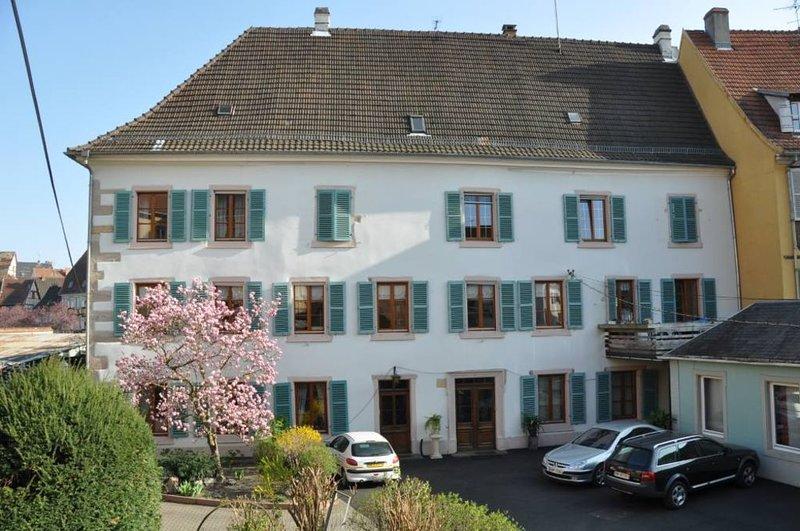 CENTRE HISTORIQUE, APPARTEMENT AVEC JARDIN, PARKING PRIVE, Ferienwohnung in Colmar