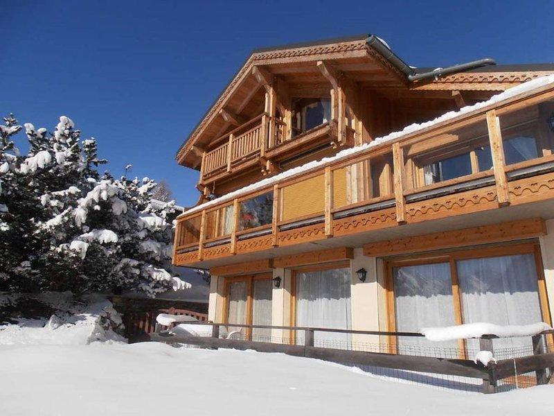 Chalet avec terrasse plein sud, offre une vue imprenable sur les montagnes., holiday rental in Saint-Christophe-en-Oisans