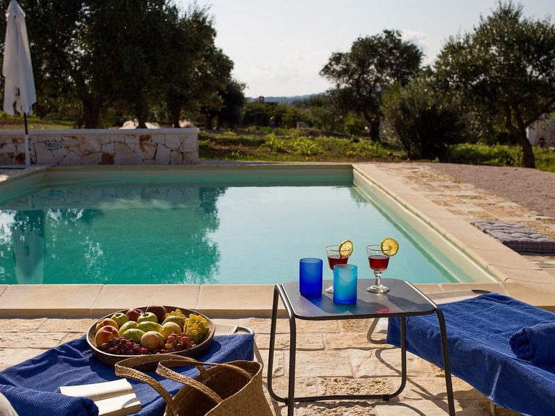 High Standard Trullo with private pool and amazing view. Great Location., holiday rental in Martina Franca