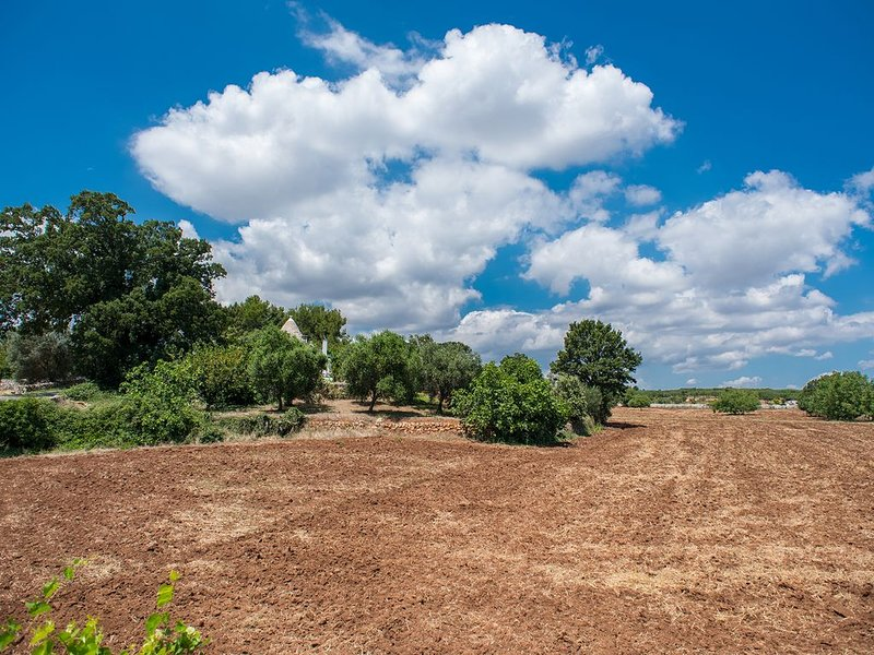 6 acres (24,000m2) of private land