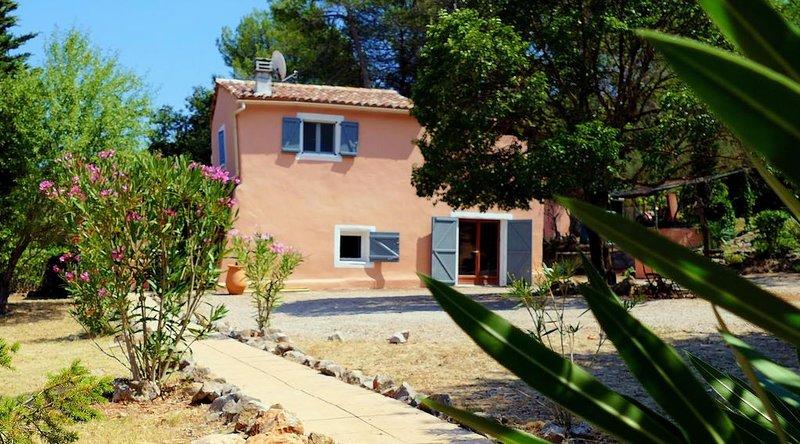 Maison calme et isolée au coeur du vignoble provençal, holiday rental in Cabasse