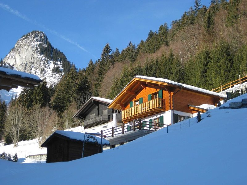 Chalet dans station familiale,TV HD,WIFI, plus grand domaine skiable Europe, holiday rental in Canton of Valais