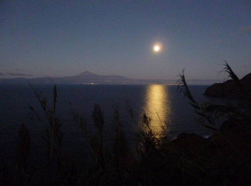 View of the Teide on a full moon night