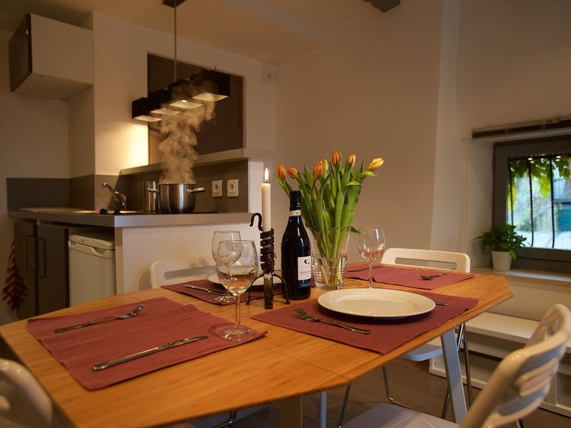 Village Apartment sleeps 2-3 200m from lake, holiday rental in Echarvines