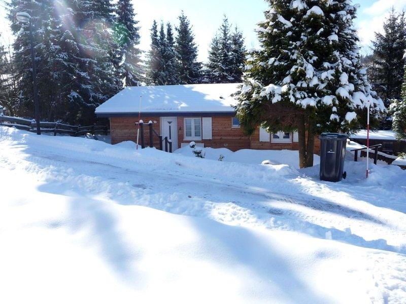 Ferienhaus mit Sauna, geräumig und schöner Aussicht, casa vacanza a Kustelberg