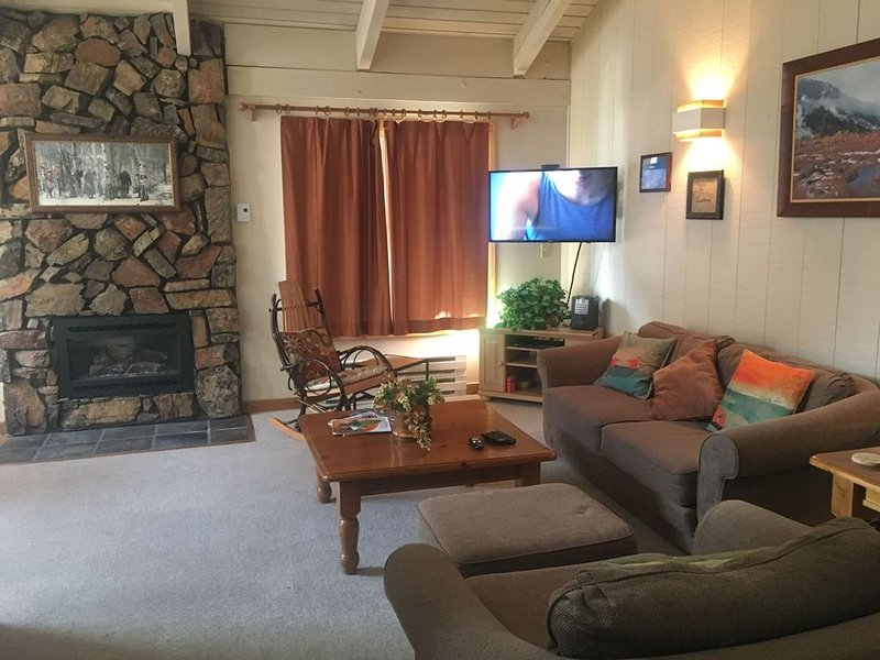 Hot Tub, Pool, Spa, Common Game Room, 10 minute Walk to Town & Lifts #112, alquiler vacacional en Ketchum