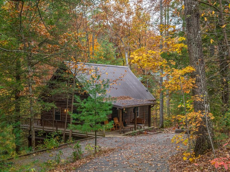 Spacious cabin in the woods w/hot tub & shared seasonal pool/fishing pond access, holiday rental in Wears Valley