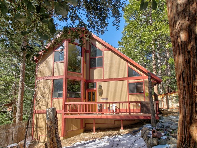 Spacious, dog-friendly cabin w/ private hot tub plus creek & mountain views, alquiler de vacaciones en Idyllwild