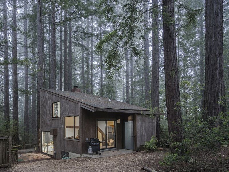 Architectural gem w/ private hot tub, redwood views & shared pools - 1 dog OK! – semesterbostad i The Sea Ranch