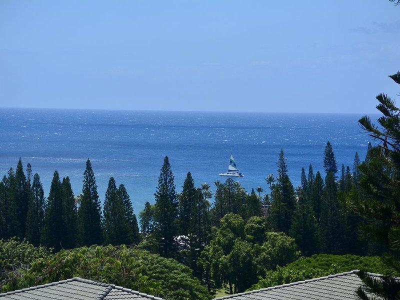 Kapalua Gold Fresh Designer Remodel Stunning Ocean Views!, vacation rental in Kapalua