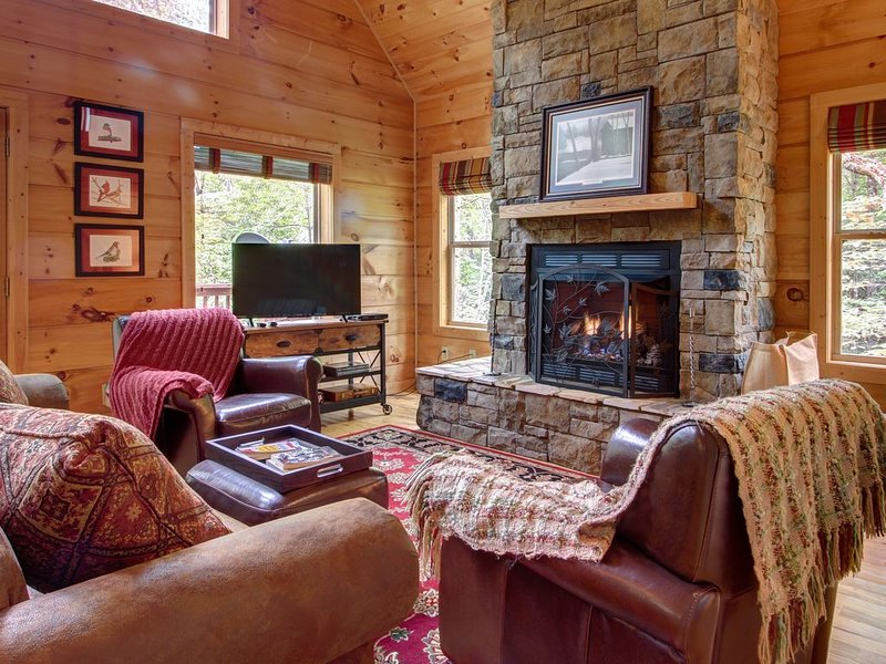 Secluded woodland cabin w/ hot tub, firepit & large deck - 2 dogs welcome!, holiday rental in Sautee Nacoochee
