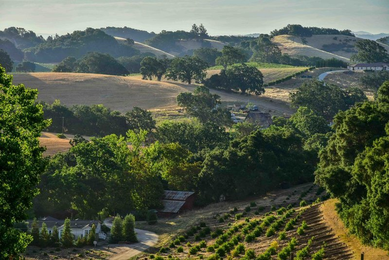 Orchard Hill Farm--Elegant Comfort in Desirable West Side Paso Robles, casa vacanza a Paso Robles