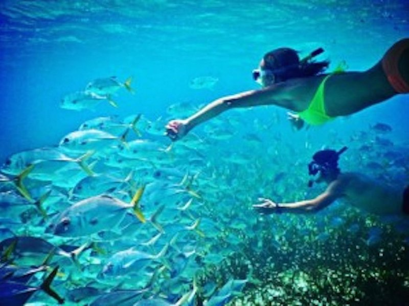 Check Out the Epic Snorkeling Nearby at Haunama Bay!