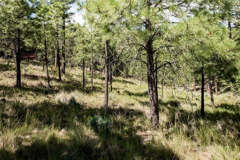 Mountain Living - Ruidoso is characterized by crips mountain air and tall pines trees, and this property has its fair share right outside the door!