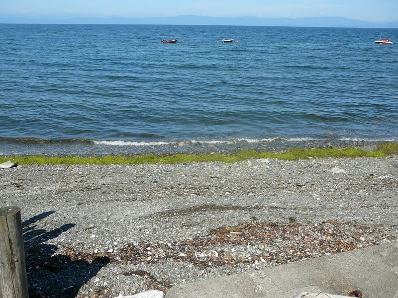 Fishing for salmon at the beach house.