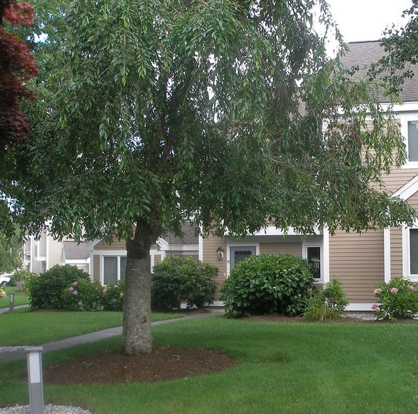 Beautiful Ocean Edge 2 BR Townhouse, WiFi A/C Golf Course View Private Backyard, vacation rental in Brewster