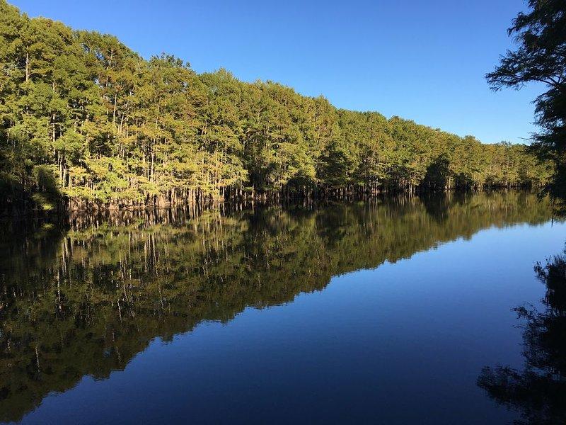 One of a Kind-Get Away/Big Cypress Bayou Near Jefferson&Caddo, location de vacances à Uncertain