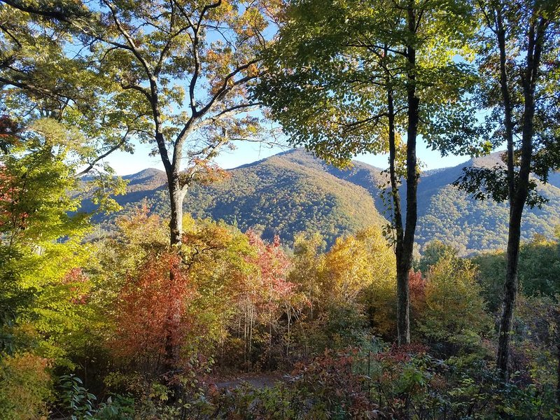 Delightful, Private Getaway for Winter or Summer activities, vacation rental in Maggie Valley